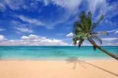 hawajczyka wysp cyraneczki wody Zdjęcie Stock