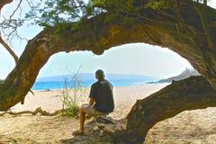 Hawaje mężczyzna drzewo Obraz Royalty Free
