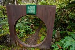 Hawaje tropikalnego lasu deszczowego domek na drzewie szczegół Obrazy Stock