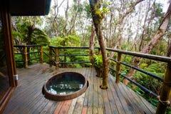 Hawaje tropikalnego lasu deszczowego domek na drzewie szczegół Fotografia Stock