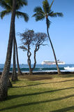 Hawajski brzeg Fotografia Stock