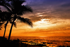 Hawajski zmierzch Fotografia Stock