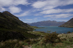 hawea湖新西兰 免版税库存图片
