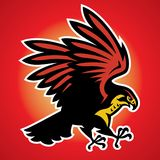 Hawk Bird Mascot. Vector of Hawk Bird Mascot Stock Photo