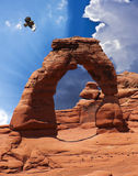 A Hawk at Delicate Arch, Arches National Park Royalty Free Stock Photo