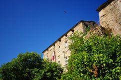 Hawk flying over corsica village Stock Images