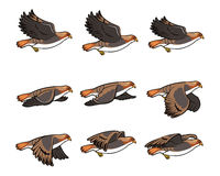 Hawk Flying Sprite. Vector Cartoon of Hawk Flying Animation Sprite for Game Project Royalty Free Stock Photography