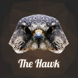 Hawk Head Polygon Vector Foto de archivo libre de regalías