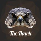 Hawk Head Polygon Vector Fotografia Stock Libera da Diritti