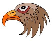 Hawk Head sur le fond blanc Photographie stock