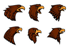 Hawk heraldic mascot vector icons set Royalty Free Stock Images