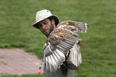 Hawk and its tamer Stock Photo