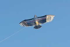 Hawk kite. A hawk kite is flying in the sky stock photos