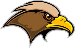 Hawk Mascot. This is a hawk mascot for use with a sports team or organization's symbol or logo Stock Images