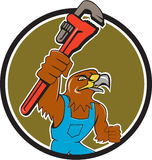 Hawk Plumber Wrench Circle Cartoon. Illustration of a hawk plumber holding wrench spanner set inside circle on  background done in cartoon style Stock Image