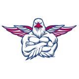 Hawk spreading the wings. Vector illustration stock illustration