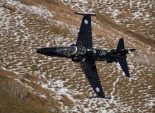 Hawk T2 Stock Photo