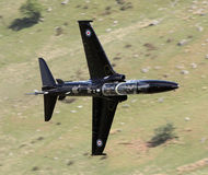Hawk T2 Stock Images