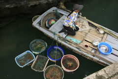 Hawker in a boat, Halong bay, Vietnam Stock Image