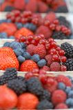 Hawker's stand with different berries. Shallow depth of field Royalty Free Stock Photos