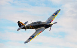 Hawker Sea Hurricane MK IIb Stock Images