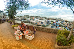 Hawker Selling dry fish Royalty Free Stock Image