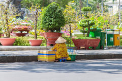 A hawker wearing conical hat is sitting on the street to sell coconut water drink at the center of Saigon ( Ho Chi Minh City) Stock Image