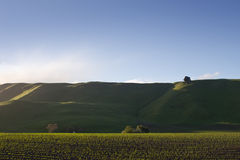 Hawkes Bay Hills  Royalty Free Stock Photography