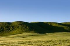 Hawkes Bay Hills  Stock Image