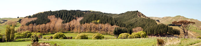Hawkes Bay Landscape Panorama Royalty Free Stock Image