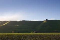 Hawkes Schacht-Hügel   Lizenzfreie Stockfotografie