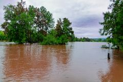 Hawkesbury River in Western Sydney, Australia. Wide brown river landscape with trees in middle of stream on cloudy day in New South Wales Royalty Free Stock Images