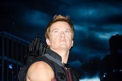 Hawkeye Στοκ Φωτογραφίες