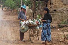 Hawking With Bicycle. A Cambodian woman hawking raw foods with her bicycle from village to village at Kampong Cham district stock images
