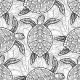 Hawksbill dennego żółwia wzór royalty ilustracja