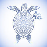 Hawksbill sea turtle. Graphic Hawksbill sea turtle drawn in line art style. Ocean vector creature in blue colors  on white background. Top view. Coloring book Stock Image