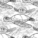 Hawksbill sea turtle pattern Royalty Free Stock Photography