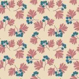 Hawthorn berries Royalty Free Stock Photo