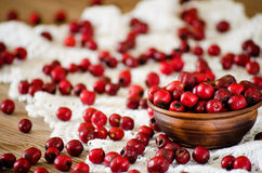 Hawthorn berries in the bowl and scattered on the table Royalty Free Stock Image