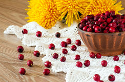 Hawthorn berries in the bowl on the table Royalty Free Stock Photos