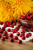 Hawthorn berries in the bowl on the table Stock Photo