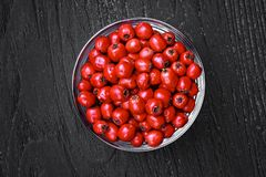 Hawthorn berries Royalty Free Stock Photos