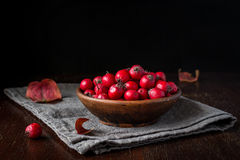 Hawthorn berries, still life Royalty Free Stock Images