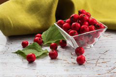 Hawthorn berry in bowl Royalty Free Stock Images