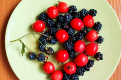 Hawthorn and blackberry on green plate. Berry harvest Stock Images