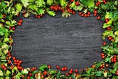 Berries frame Stock Photo