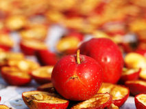 Hawthorn and dried fruit Royalty Free Stock Images