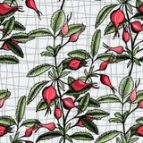 Hawthorn seamless pattern Stock Photo