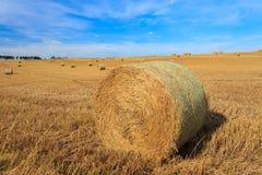 Hay стог в поле на солнечный день Стоковое Изображение