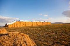 hay стог Стоковые Фотографии RF